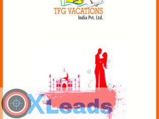Pay Per Click – TFG Company has been noted as best